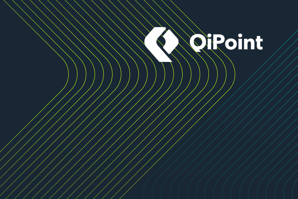 qipoint case study